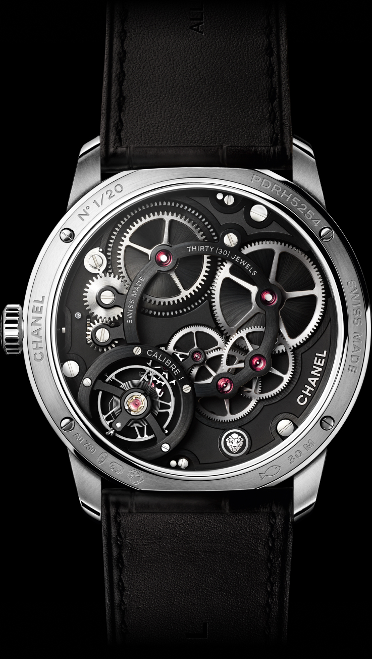 H5487 MONSIEUR platinum watch back view